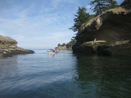 David B Cruises - kayaking in the san Juan Islands