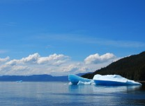 Iceberg in Tracy Arm Alaska