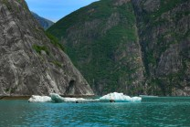 Low iceberg in Tracy Arm