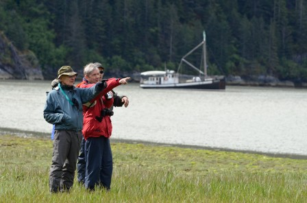 Wildlife Watching on a Alaska Cruise