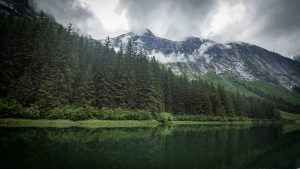 Landscape Photography Workshop in Alaska with Small Ship Cruise