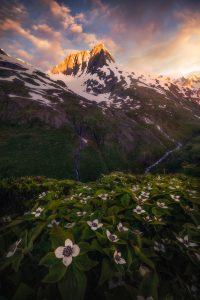 Matt Meisenheimer Photography - Alaska landdscape